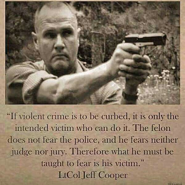 2Nd Amendment Quotes 23 Best Second Amendment Quotes Images On Pinterest  Firearms Gun
