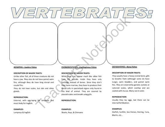 Biology Research Project - classifications for invertebrates and vertebrates from Velerion Damarke on TeachersNotebook.com -  (8 pages)  - This workbook set of pages gives you space to show pictures and examples of the 7 major phyla of vertebrates and the 9 major phyla of invertebrates.