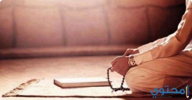دعاء الوتر مستجاب في رمضان كامل ادعية اسلامية اجمل ادعية رمضان ادعية الوتر Sunnah Prayers Prayers Islam