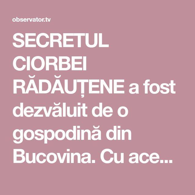 SECRETUL CIORBEI RĂDĂUȚENE a fost dezvăluit de o gospodină din Bucovina. Cu această rețetă nu vei da greș vreodată!   Inedit   Observator