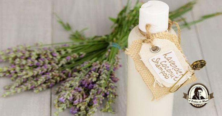 Receita de champô naturais e caseiros