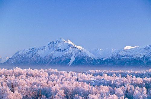 Wasilla, Alaska | city |Wasilla Alaska Landscape