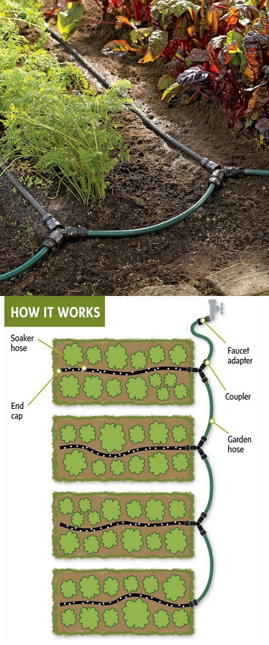save on water ~ Garden Row Snip-n-Drip Soaker System lets you create a convenient watering system for your vegetable garden. No special tools required — just use scissors to cut the hoses to the sizes you need. Snap the fittings in place and you're ready to water.