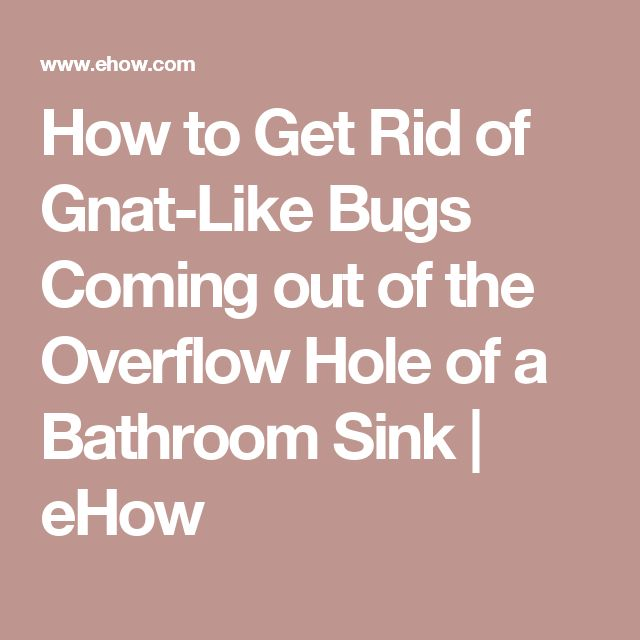 How to Get Rid of Gnat-Like Bugs Coming out of the Overflow Hole of a Bathroom Sink | eHow