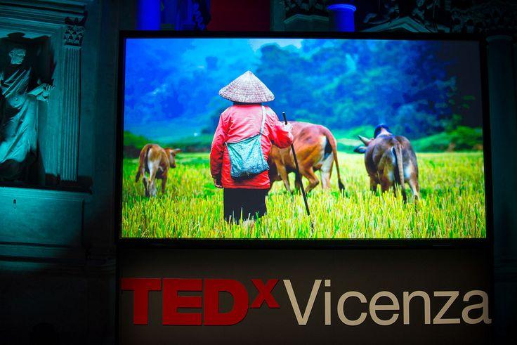 #TEDxVicenza #PlantingTheSeeds #TEDx #Vicenza