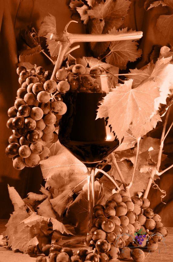 Periodo di funghi...che vino scegliere? Siamo in autunno, in maremma come in ogni regione d'Italia è il periodo degli...Ovoli, Galletti, Porcini, Prataioli, Barboni, Orecchini, Piopparelli, Prugnoli, Spugnoli, Mazze di Tamburo, Tartufi bianchi, Tartufi neri...dalle cucine delle case o dei ristoranti escono piatti profumatissimi preparati con...i funghi....ma che vini abbinare? Quasi tutti infatti accostano vino rosso con la carne e vino bianco con il pesce ma cosa bere ad esempio con i…