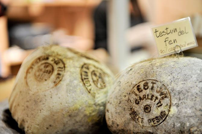 """Testun del Fen"" Cheese, a tipical Langhe cheese"