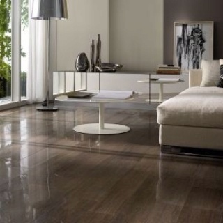 This Is A High Gloss Floor Tile Not Wood Or Vinyl