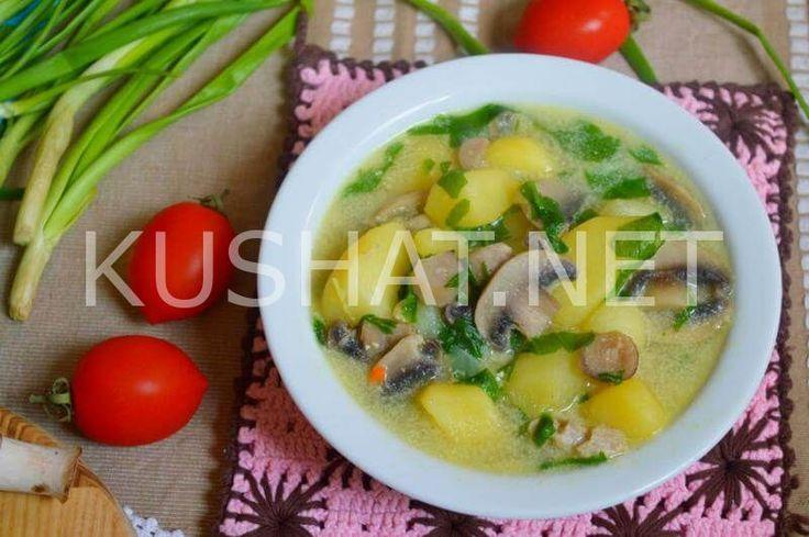 Суп из шпината со сливками и грибами