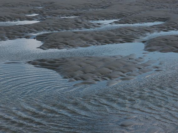 In mijn vrije tijd verblijf ik veel op Vlieland. Ik houd van de zee en loop vaak over het strand. Er is dan ontzettend veel te zien en te beleven. Alles wat de zee bij vloed naar het strand brengt. Maar ook de vormen de golven en stromingen achterlaten in het zand