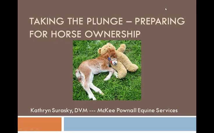 In this recorded webinar, Dr. Kathryn Surasky discusses points to consider when taking the leap into horse ownership.