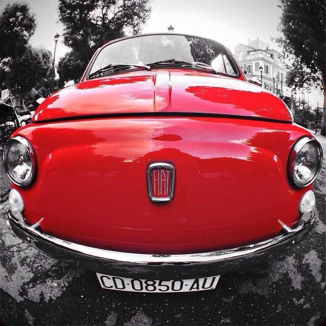 Che musone!! (by rafasilveira on Instagram) Registrate la vostra Fiat 500 su http://ift.tt/1lxIEna è gratis e divertente!!