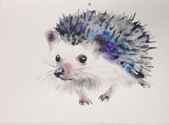 Hedgehog by Kristina Brozicevic   Artfinder