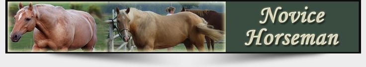 Horse Riding Helmets - Novice Horseman #Aegis_helmets #Troxel_helmets #IRH_helmets