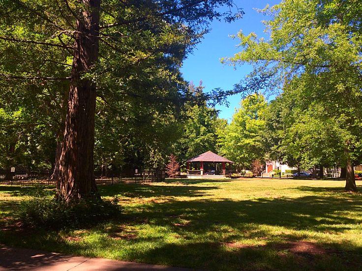 Kenwood plaza park.
