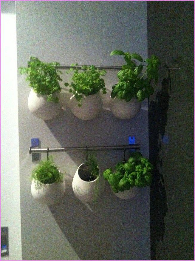 22 Best Indoor Herb Garden Images On Pinterest Herb 400 x 300