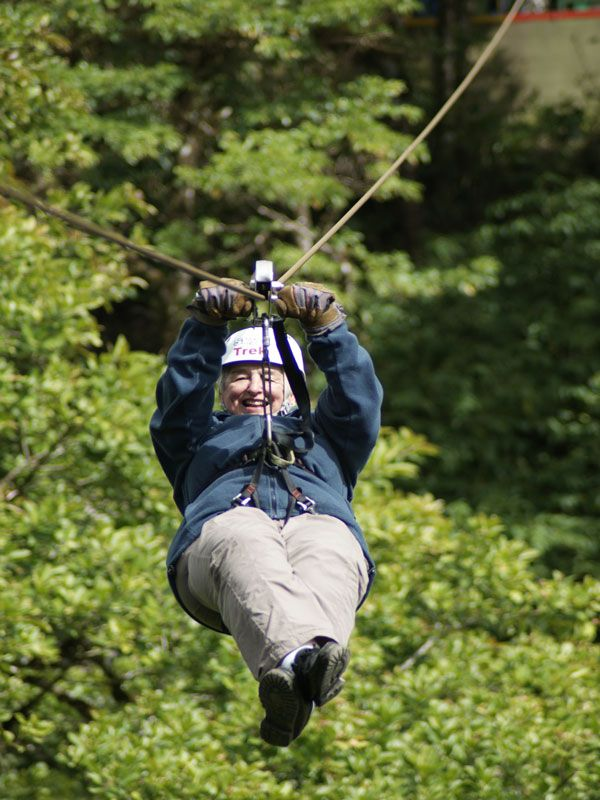 Try a zipline canopy tour in Monteverde Costa Rica & 53 best Canopy Tours images on Pinterest | Canopy Tours and Costa ...