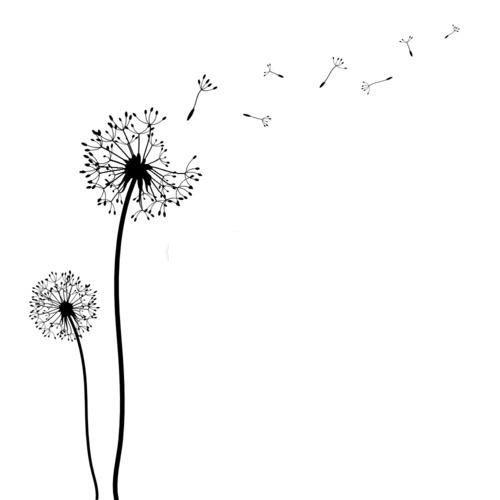 pusteblume malvorlage | pusteblumen zeichnen, löwenzahn