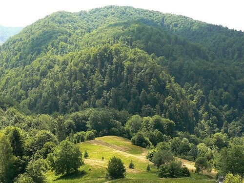 Padiş is perhaps the most famous tourist area in Apuseni Mountains.