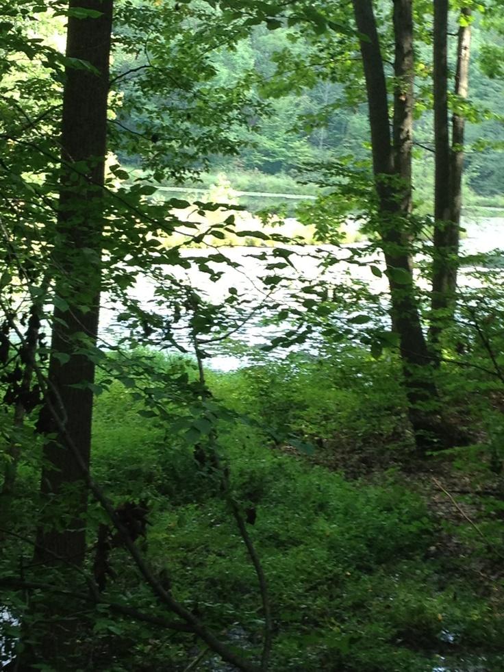 Twin lake hike. At Ally park