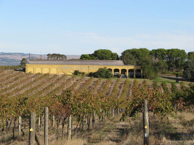Simon Hackett Winery McLaren Vale South Australia