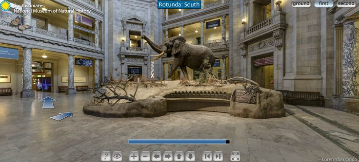 7 Good Virtual Tours for Students