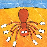 """Children's book - One is a Snail, Ten is a Crab. In this """"counting by feet book,"""" one is a snail, two is a person, four is a dog, six is an insect, eight is a spider, and ten is a crab. Numbers are represented as combinations of animal feet. Question - how many different ways can you make ten? The multiple solutions reflect an understanding of """"ten-ness,"""" making computation easier in later grades."""