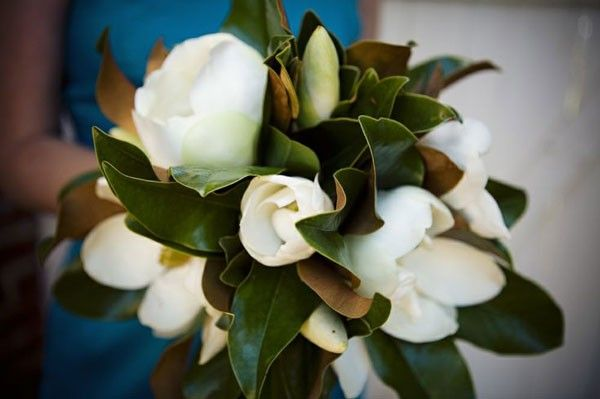 a charming Southern magnolia wedding bouquet | http://www.mywedding.com/articles/southern-wedding-flowers-gardenia-and-magnolia-details/
