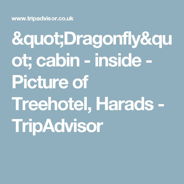 """Dragonfly"" cabin - inside - Picture of Treehotel, Harads - TripAdvisor"