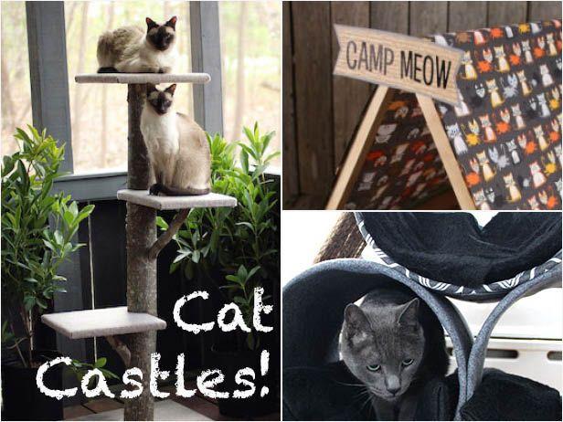 3 DIY Cat Castles >> http://blog.diynetwork.com/maderemade/2015/06/15/blogger-challenge-do-it-yourself-cat-castles/?soc=pinterest