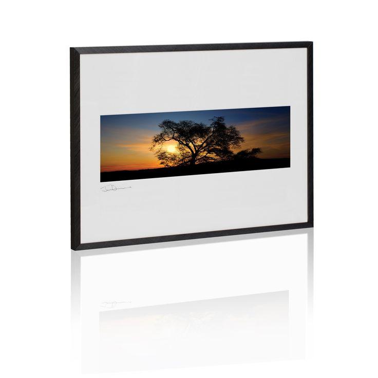 Dawn Tree of Life (Framed Art)  #ArabicArtwork #framed #DecorWallAccents #DecorFramedArt #ArtworkFromGalleryOne #dawn #art #A2 #ArtworkOnHevo #ArtFromGalleryOne #decor #DecorArtwork #5001000 #dusk #ArtFramedArt