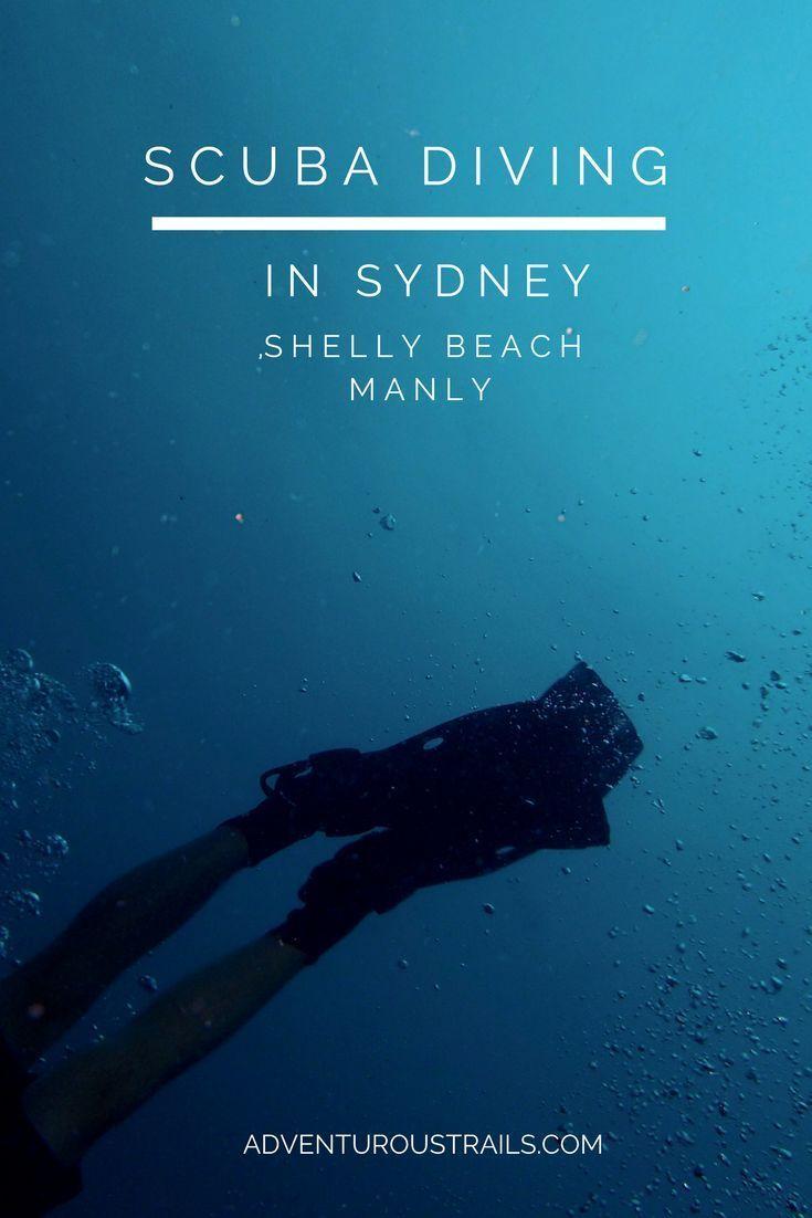 Diving Shelly Beach in Sydney, Australia! | Scuba Diving In Sydney