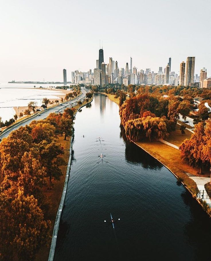 "11.9k Likes, 106 Comments - Chicago (@choosechicago) on Instagram: ""We see sprinkles of gold around the city, and we want to know where you do your #ChicagoLeafPeeping…"""