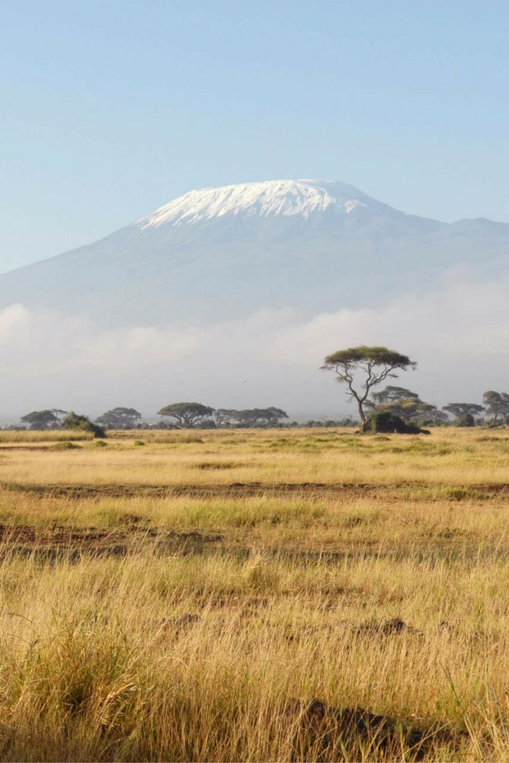 10 Top Guided Walking Safari Destinations | Many safari camps and lodges offer guided walking safari in the morning as an activity option...