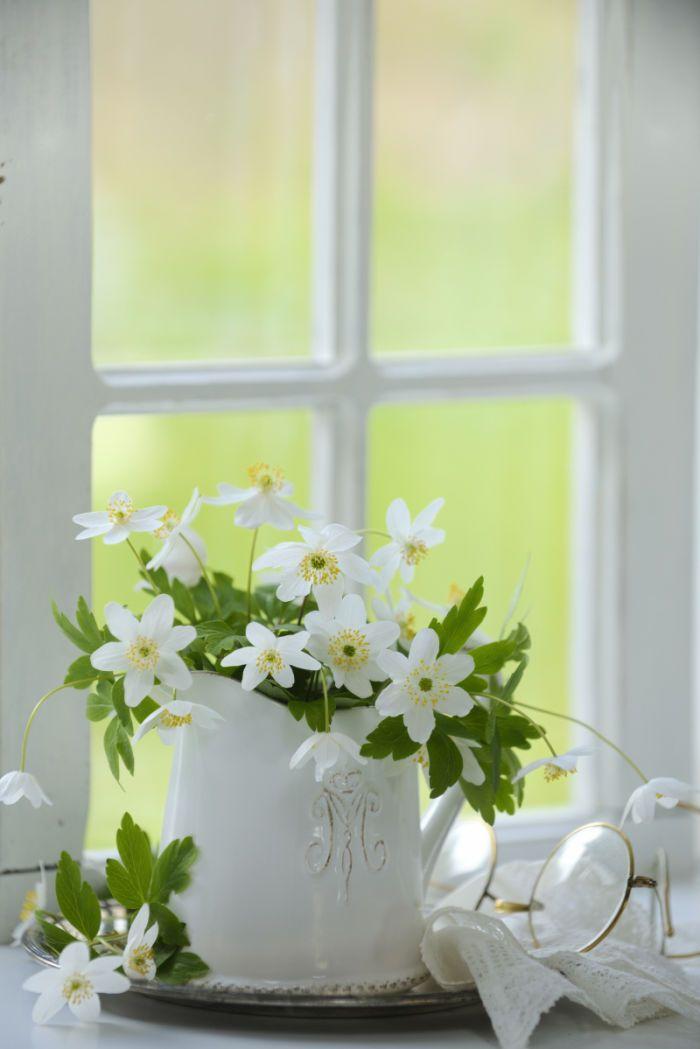 фото цветы в кувшине окно татуировки