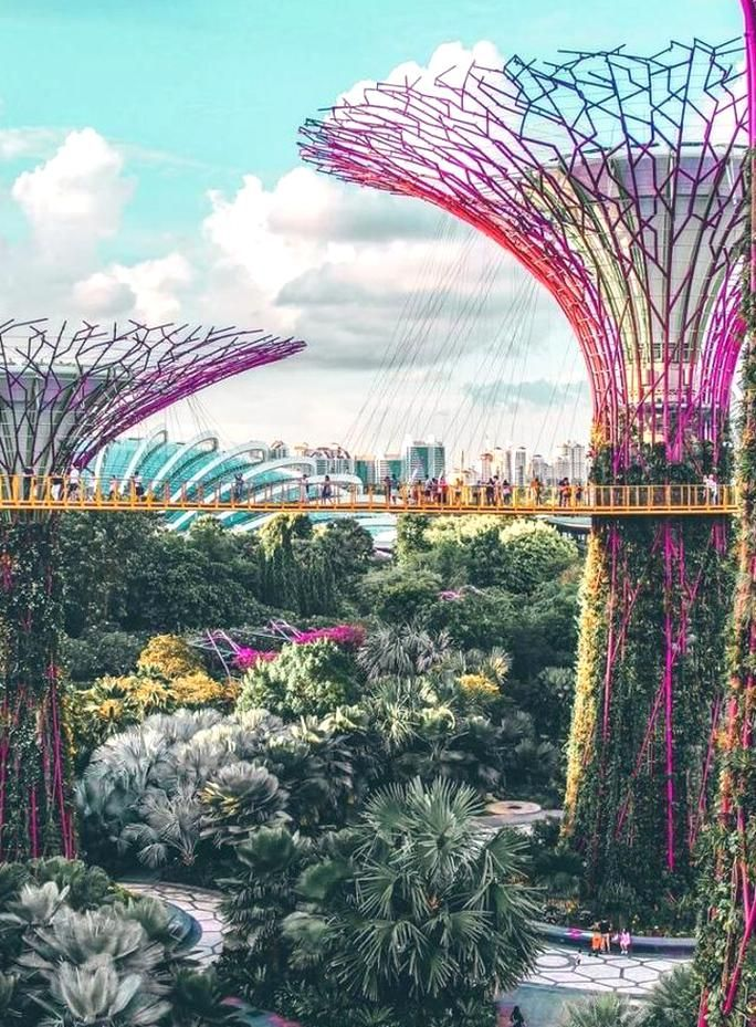 a8ef736949b77e9f03e0f65d6c472b8e - Gardens By The Bay Food Street