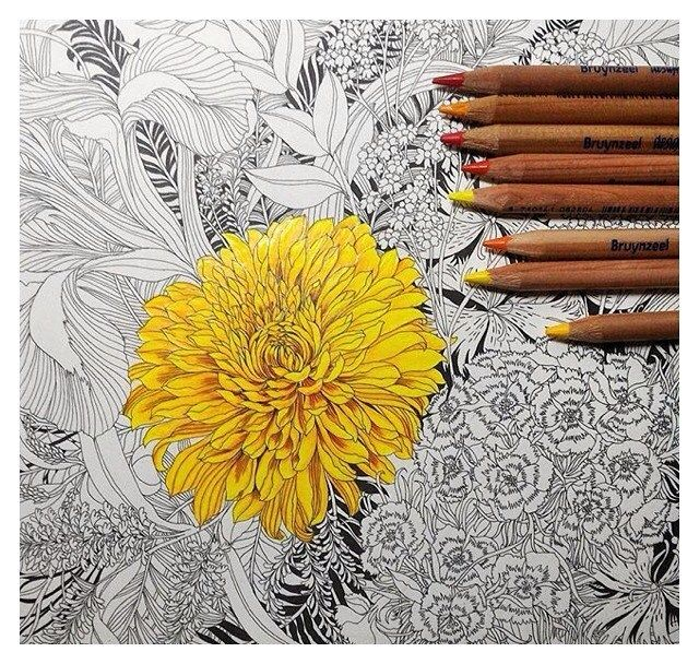 @hsieh_ellen posted this colouring in progress - a beautiful bright yellow Chrysanthemum   love