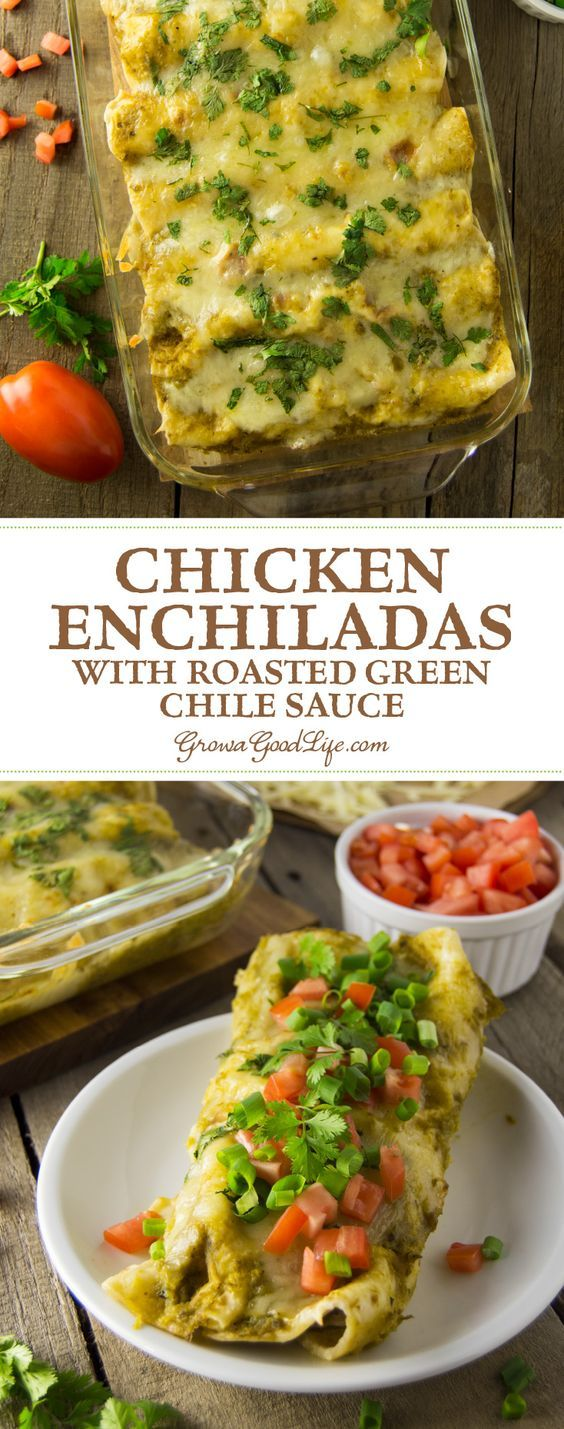 The mellow spicy flavor of the Anaheim or New Mexico type peppers pairs well with shredded chicken and Mexican spices and cheese in this Chicken Enchiladas recipe.