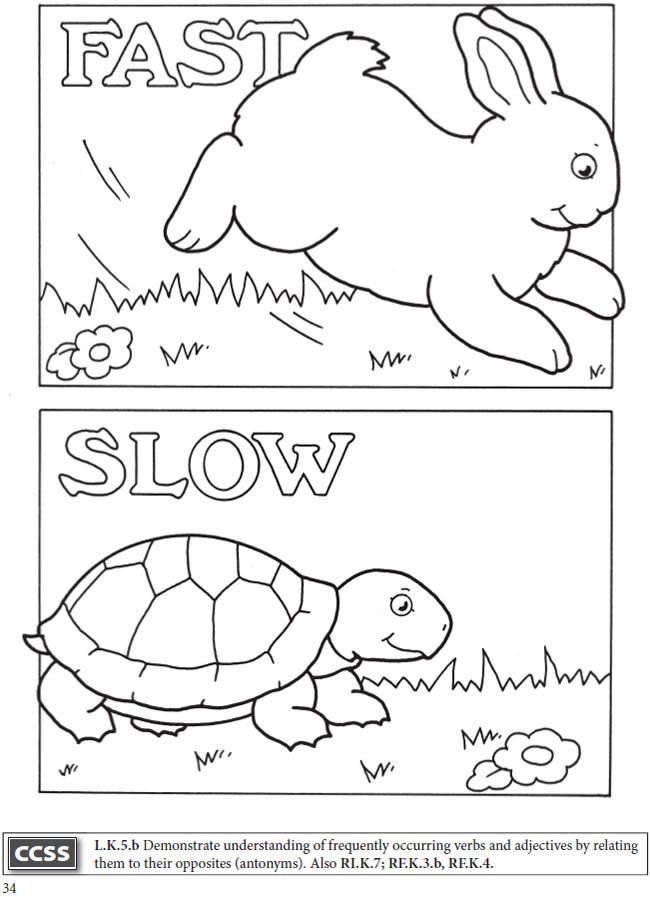 Image result for fast and slow coloring | Preschool ... | coloring worksheets for preschoolers