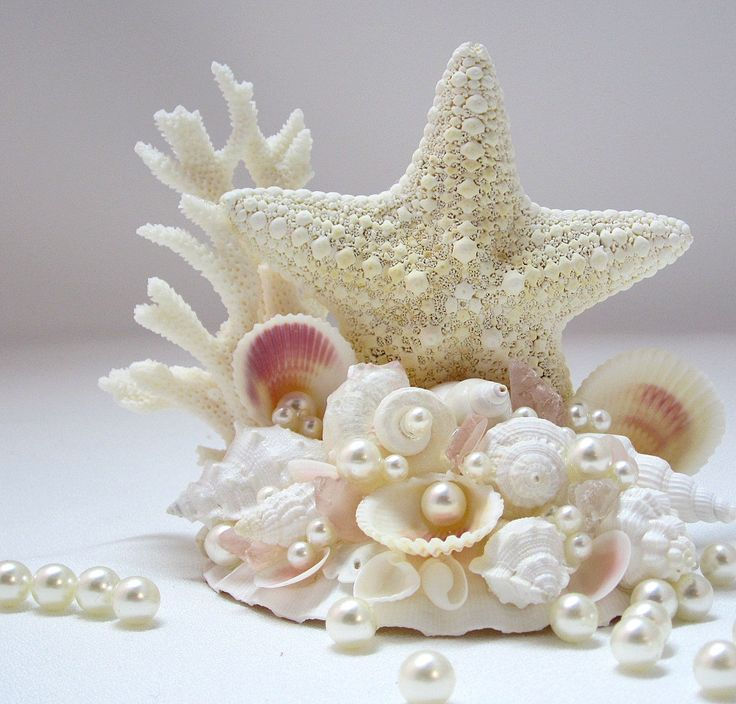Starfish Every life form seems to reach out to its own kind in