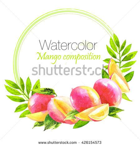 Watercolor painting set of mango fruit isolated on white background. Watercolor hand painted illustration. Food Design. Vegan Food. Can be used as greeting card for birthday,wedding and so on