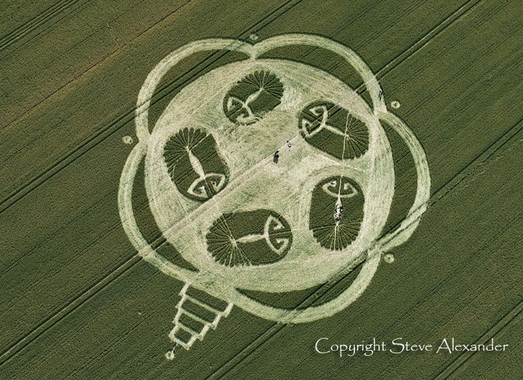 Cropcircle in Honey Street Withshire England in July 2011