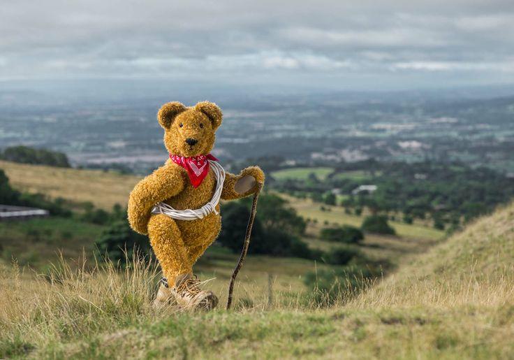 Teddy Bear Hike at the Cavan Walking Festival 2014