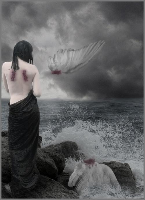 Nunca me hice ilusiones, ya que mis alas siempre fueron falsas
