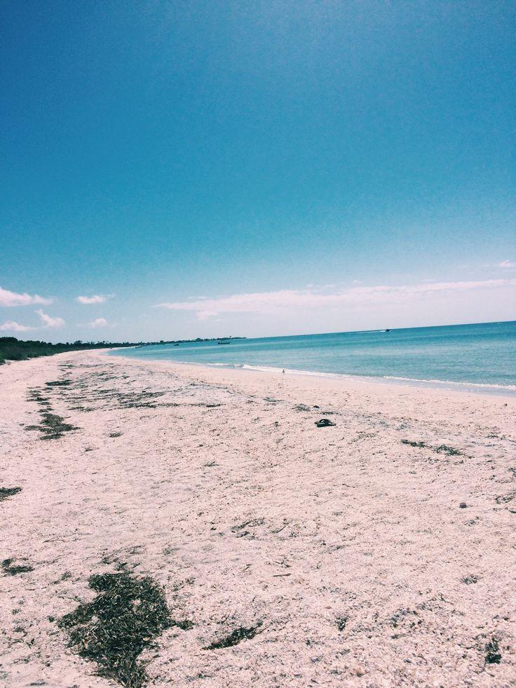 Cayo Costa Sandbar, Sanibel Island, Florida