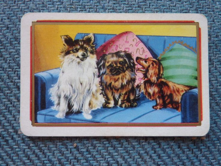 COLES TRIO OF PUPPIES DOGS ONE SINGLES Vintage Swap Playing Card *A*