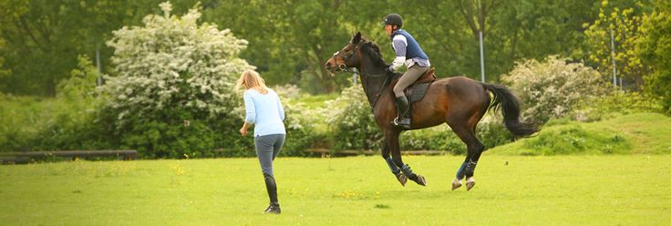 We teach all riding lessons from beginners to stage 3 BHS riders