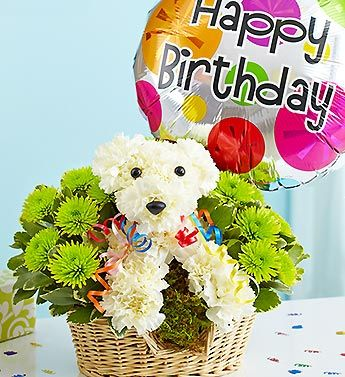 Party Animal™   Bark up the right tree for their birthday surprise -- send our hand-designed a-DOG-able® arrangement, crafted by our florists with white carnations and playful poms. All dressed up to party down, it's paired with a festive Happy Birthday balloon and decorative ribbon in a dapper dog bed. It's a gift that's sure to be the pick of the litter.