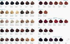aveda hair color chart online - Google Search