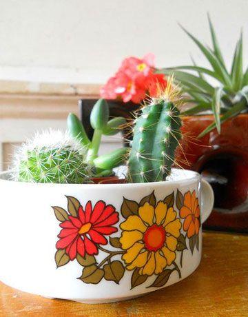 Vasos diferentes #vases #plants #plantas #eaf
